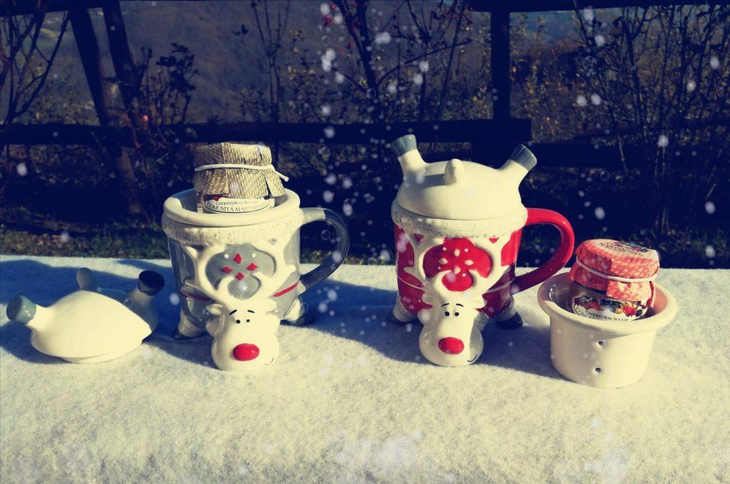Idea regalo Natale tazza per infusi con prodotti biologici